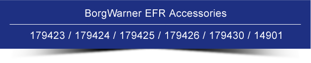 BorgWarner EFR Accessories